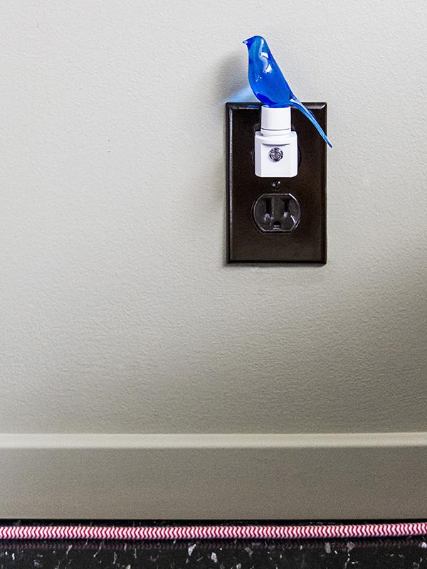 Home Dseign D Premier Application Decoration Interieure